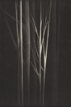 Forest_nocturne_iv