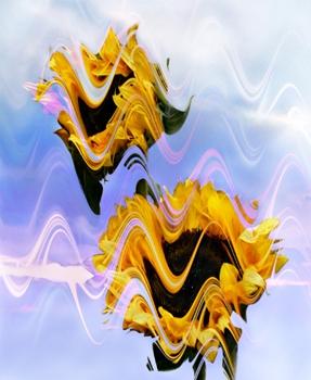 Spiriture_wave