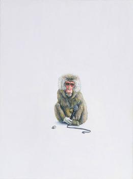 Monkey-_glove_