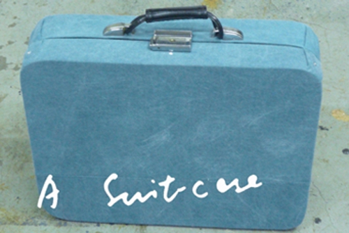 Currentinpalermo_suitcase