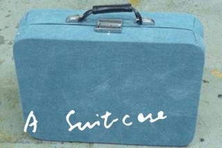 Currentinpalermo_suitcase