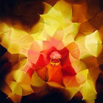 Little_blossom
