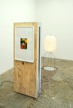 Dike_blair___in__out__2008__noguchi_lamp__painted_wood__carpet__framed_gouache_on_paper__h_70_x_w_26_x_d_111_inches__view_1