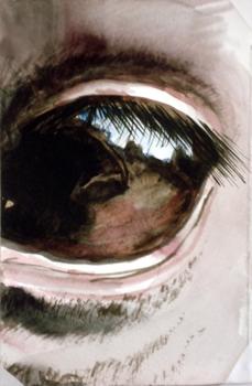 4x6_inch_eye8_copy
