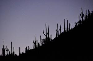 Arizona_0909_103