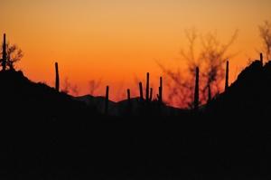Arizona_0909_104small