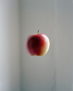 04_apple