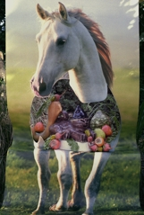Horse_with_cat_and_persimmons