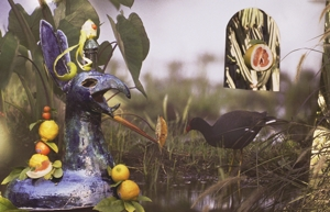 Moorhen_with_dragon_and_citrus