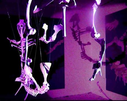 Bone-hanging-shadow