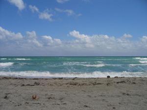 Solis_hollywood_beach
