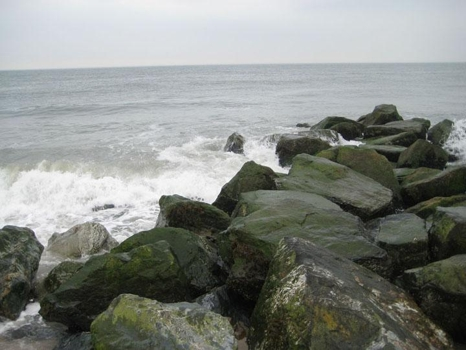 Solis_jersey_shore
