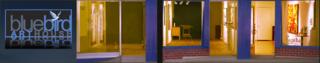 Bluebird_art_house