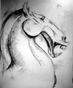 Horse_face