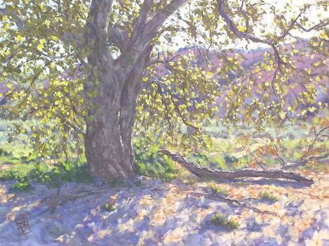 Scott-prior-back-lit-california-oak_18x24