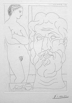 Picasso-model