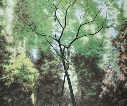 Tree_of_life__acrylic_on_canvas_over_panel__60_x_72_small