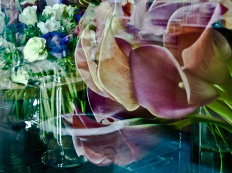 Venice_flower_shop