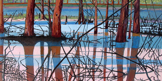 Wetland_6x12