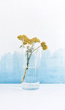 Bouquetslide