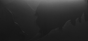 Gleason_shadows_phantom