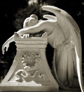 Stanfordangel