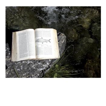 Fish_book