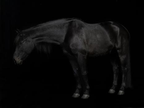 En_svart_hest