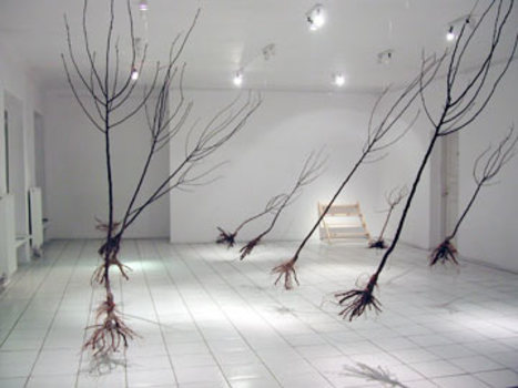 Orchardfront_1_installation