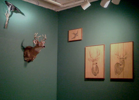 Deerinstallation