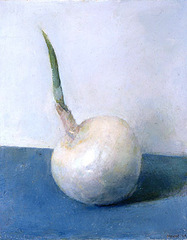 White_onion_email