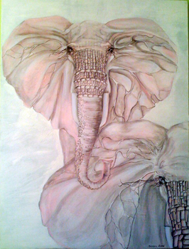 Elephants_collection