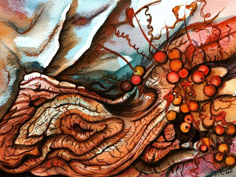 _amorgian_wood__watercolour___ink