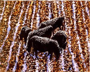 Bungay-cows__wyoming_web_-1
