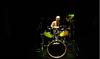 Chopra_drum