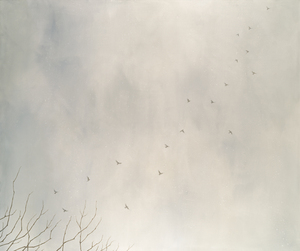 Clouds_and_crows