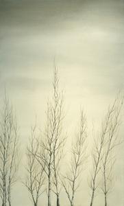 Birch_saplings