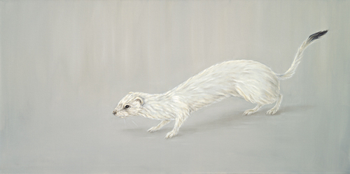 Ermine_low_res