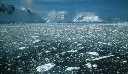 Antarcticapackice_kodakektachrome100plus