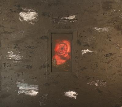 _t___kalis_rose_side_2_45x50