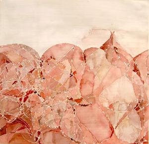 Sd07-1-pinkwire-l