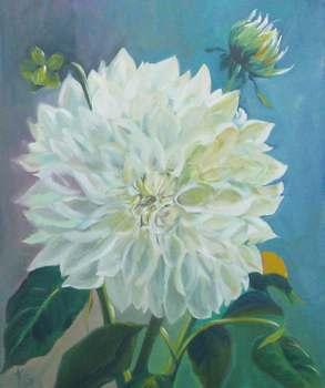 Giant-white-dahlia
