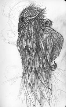 Birdsketch