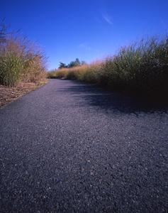 Ukeles--glassphalt_path