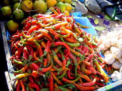 019_72ppi_chillies_in_the_kabul_market_11_21_01