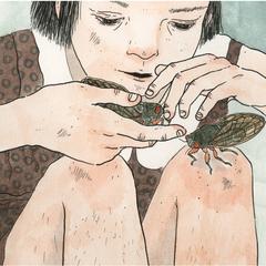 Anneemond_cicadas_l