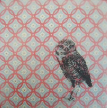 Owl-wallpaper