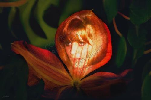 _43_-flower_maiden