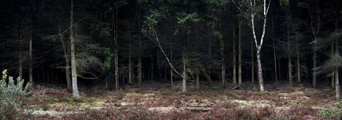 Silent__dark_and_deep_12