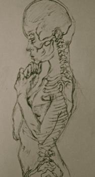 Anatomyfinal11